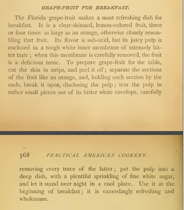 Recipe grapefruit_miss corson 1886