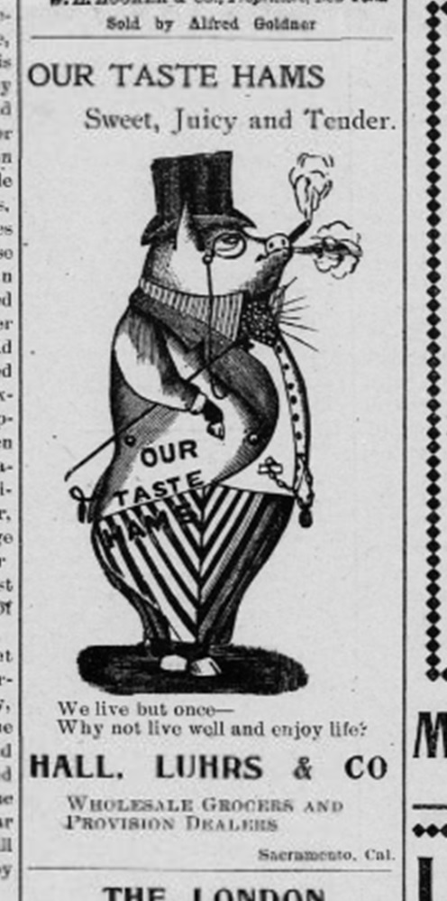 Advertisement-Pig_hams2_amadorledger1900