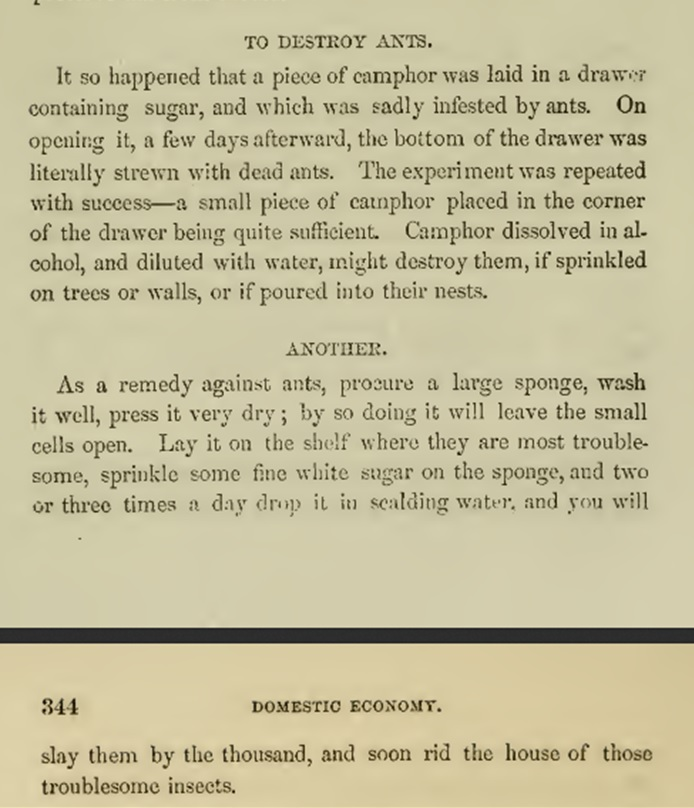 practicalamericancookery_1856_hall_ants