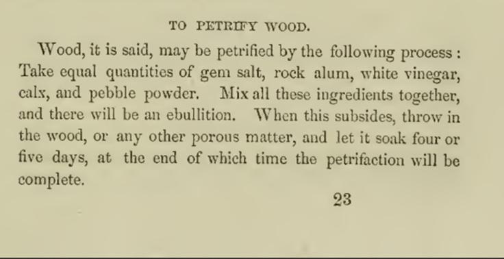 PracticalAmericanCookery_1856_Hall_PetrifyWood.jpg