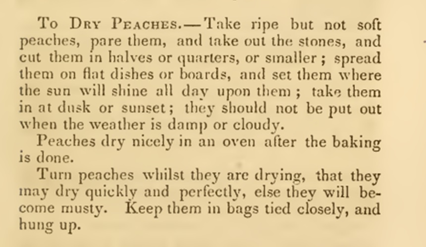 drying peaches 1860s