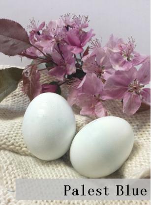 Blue-Easter-Eggs