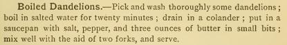 Dandelion-Boiled-Franco-American-1844