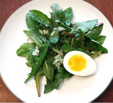 Dandelion-Salad-Vinegarette