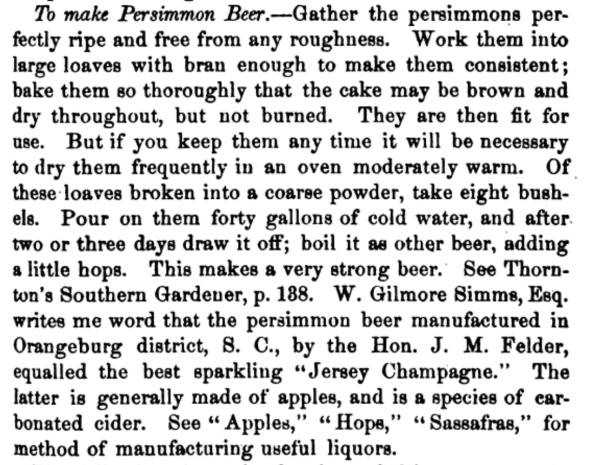 Persimmon Beer Recipe