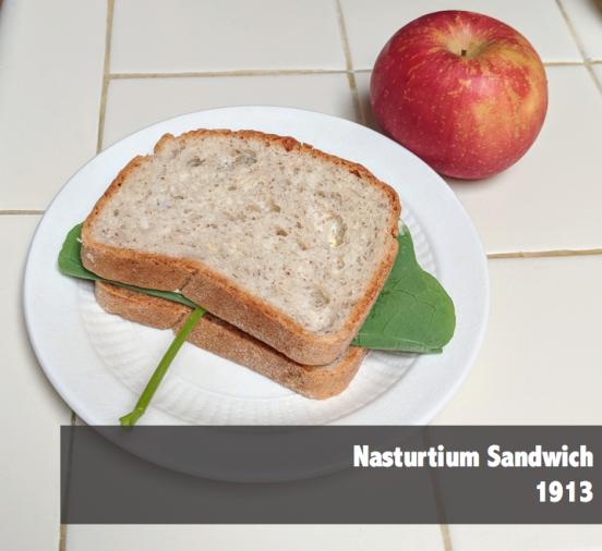 Nasturtium-Sandwich-1913