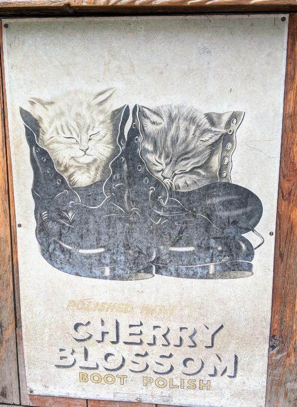 CherryBlossomBootPolish