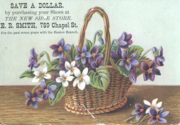 Violets-Victorian Postcard