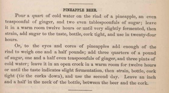 PineappleBeerRecipe_1875