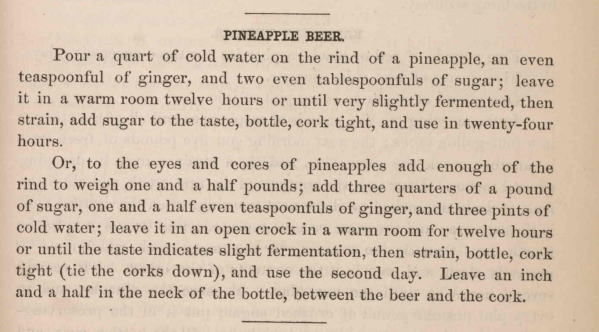 PineappleBeerRecipe_1875