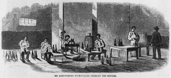BottlingWine