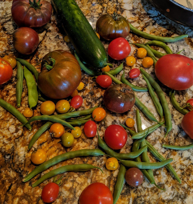 Summer garden harvest