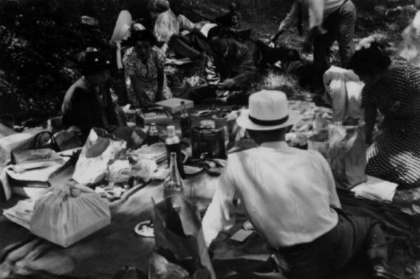 Picnic-DLIFLC-WWII