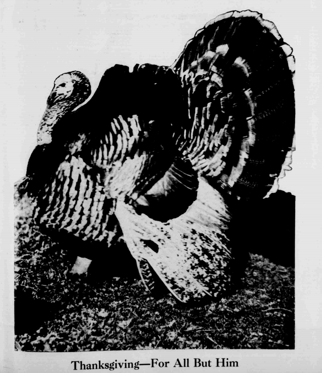 Thanksgiving_Turkey_1919